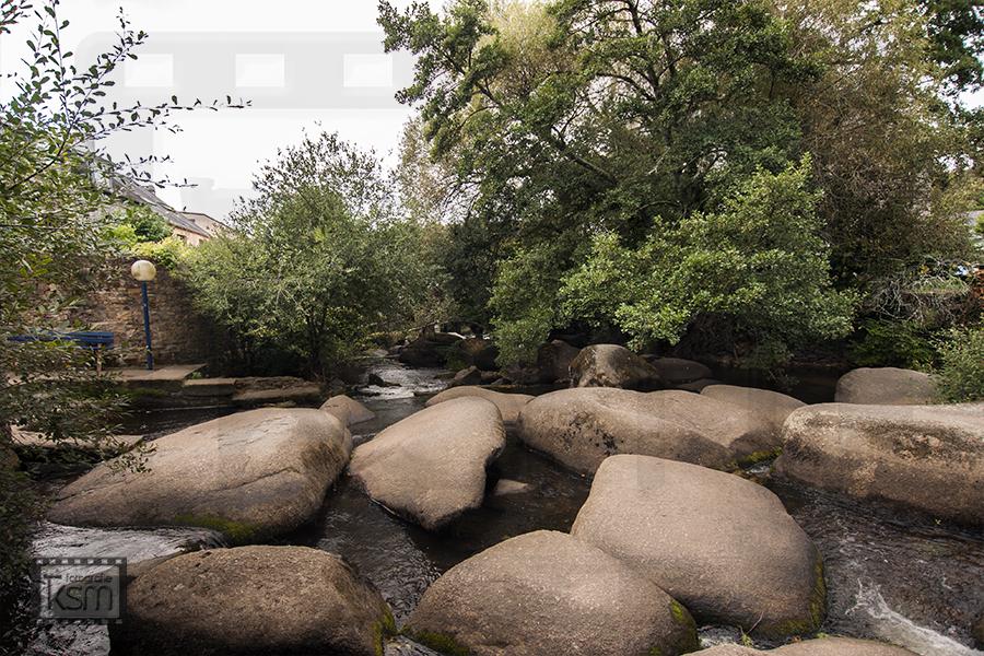 Fotografie Pont-Aven Wald - Copyright by ksm-fotografie