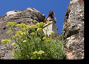 Bild 20 - Recherche Portugal - Schweizer Leuchtturm GmbH