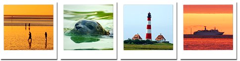 Eindrücke unserer Reiseerfahrung - Schweizer Leuchtturm GmbH